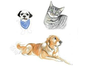 Three Pets. Custom Pencil Pet Portrait Pencil or watercolor Pet Portrait. Custom pet illustration.Art for pet owners