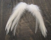 Eggshell Rooster Cape Feathers ~ Cruelty Free