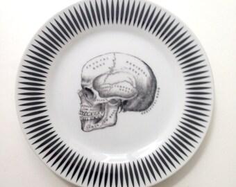 black white Anatomical Skull Plate Altered Art gothic