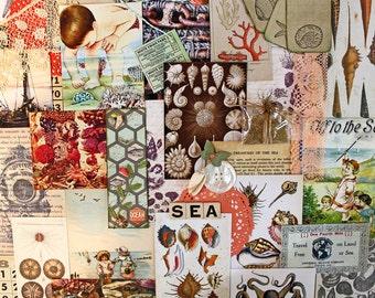 Treasures of the Sea*Sea Inspiration Kit*Printed Paper Ephemera Pack