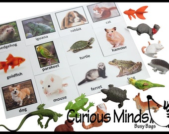 Montessori Pet Animal Match - Miniature Animals with Matching Cards - 2 Part Cards.  Montessori learning toy, language materials