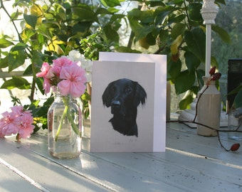 Pebble - A6 Blank greetings card of a Flat-coated Retriever drawn by Imogen Man