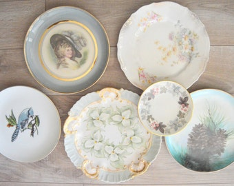 Mismatched Plates Instant Plate Collection, Plate Wall, Gray Grey