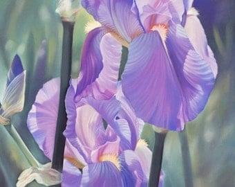 Iris Flower Art - Purple Iris Print - Purple Iris Decor - Iris Wall Art