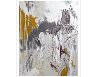 Red-Footed Falcon - A3 Giclee Print