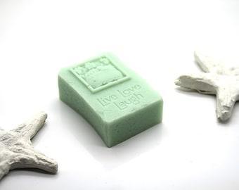 Mild-care soap with Aloe vera