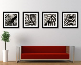 Set Of 4 Zebra Photographs - Zebra Pattern - Animal Art - Wildlife Animal - Strip Pattern - Wall Decor - Square Photos - Animal Photograph