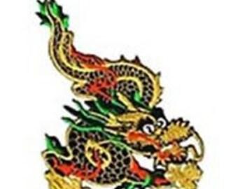 "Metallic Multi-color Chinese Dragon Applique Patch 4-1/2L x 3""W"