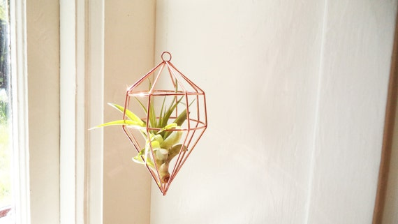 Geometric hanging plant holder with air plant wire geometric for Geometric air plant holder