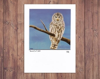 Barred Owl Art Print, Matted to fit a 5x7 frame