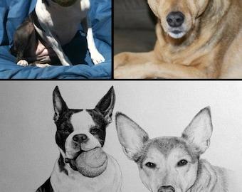 Custom original sketch portrait, pencil drawing, 2 pets