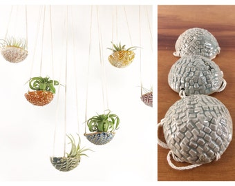 "air plant hanging planter / air plant holder / textured 3"" wide / grey jade celadon"