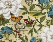 Butterfly Fabric - Modern Curiosity Allover by Sue Schlabach of Wild Apple for Timeless Treasures c4454 Natural - Priced by the Half Yard