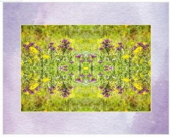 Wildflower Mix Print