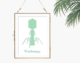 Microbiology print science gift idea mint green decor virus poster biology art print college dorm decor science chart bacteriophage artwork