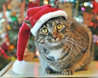 Cat Hat Santa's Hat Pet Hat Made to Order