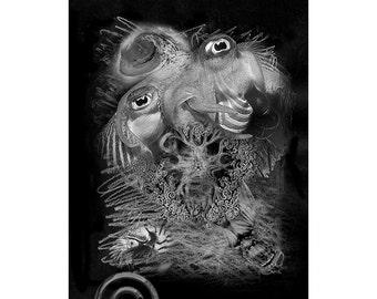 Sea Life #14, Inkjet print  7x9 image on 11x14 archival paper