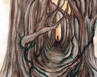 Red Wood - Original Watercolour Print
