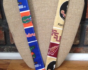 House Divided Florida Seminoles and Gators