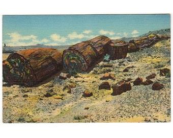 Holbrook Arizona vintage linen postcard | Petrified Forest National Park, Painted Desert | southwestern decor | 1930s AZ travel postcard
