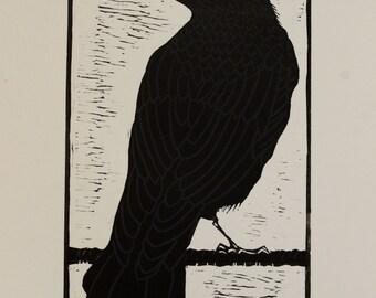 Corvida, Crow, Rook, Raven Lino-print