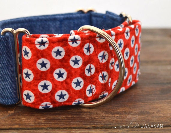 Martingale dog collar model Born in the USA. Adjustable and handmade with 100% cotton fabric. Boho native pattern Wakakan