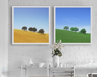 Northern California Hills Photographs Trees on Yellow Hills San Francisco Photography Landscape Art Print Elegant Decor Spring and Summer