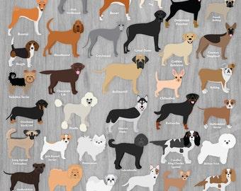 Dog Clipart Bundle Pet Clip Art Graphics Dog Breeds Illustration Set Toy Hound Terrier Bulldog Digital Dog Lover Scrapbooking Clipart Images
