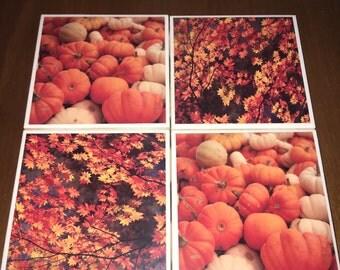 Fall Coaster Set - Pumpkin & Leaf Coasters