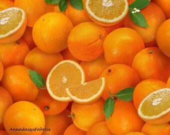 Oranges Fabric Fruit Fabric Elizabeth S Studio Els261 Orange Citrus Fruit Quilt Fabric