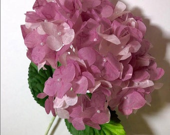 DIY Paper Hydrangea with Template