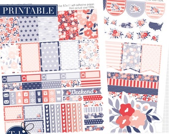 Patriotic July kit printable planner stickers, Labor day printables for MAMBI Happy planner. 4th of July patriotic shabby chic two pack.