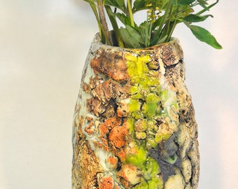 Lichen Vase 1