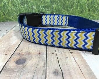 "The Plato | Designer 1"" Width Dog Collar | CupcakePups Collars | Canine Companions Blue and Yellow Zig-zag - Medium/Large Dog Collar"