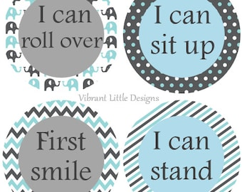 Baby's First Stickers, Monthly Baby Stickers,  Milestone Stickers Boy-F51