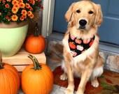 Pumpkins Dog Bandana Orange on Black - Delightful Glow In The Dark -  Puppy Gift by Three Spoiled Dogs