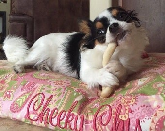 Cheeky Dog Bed *  Lilly Inspired Collection * Pink Green Paisley * Custom Embroider Your Pillow * Small * Personalize * TSD