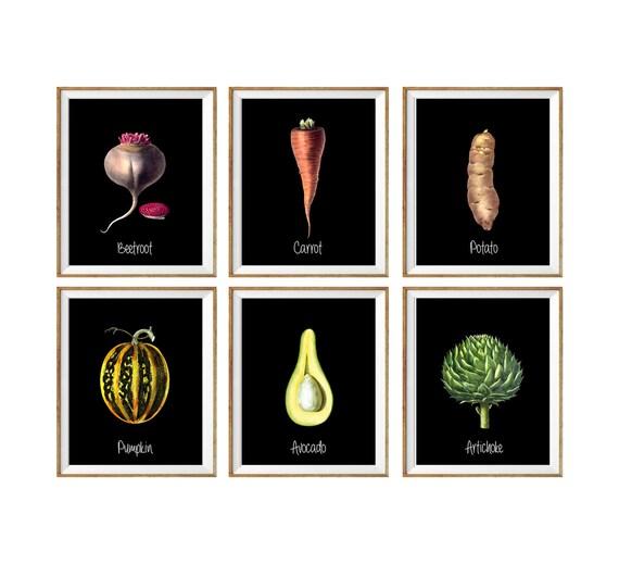 Moderne kunstdrucke küche küche wanddekoration botanische