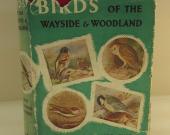Vintage Nature Book - Birds of the Wayside and Woodland