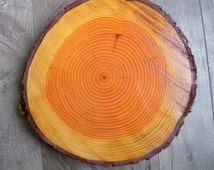 Rustic Centerpiece - Rustic Wedding Centerpiece = Wood Round Centerpiece - Tree Trunk - Natural Wood Slice - Tree Round Centerpiece