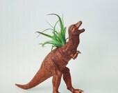 Large Copper T-Rex Dinosaur Planter with Air Plant; Dinosaur Planter; Dino; Tyrannosaurus Rex Dinosaur Planter Air Plant; Tillandsia