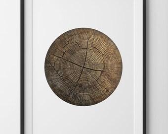 Circular Wall Decor circular wall art | etsy
