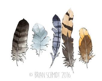 Feather Illustration Print - Southwestern Nursery Art