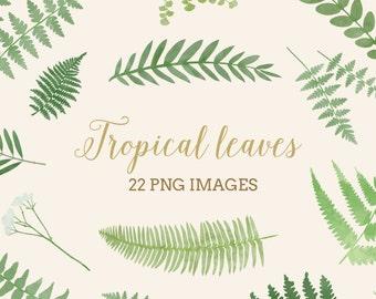 Tropical leaves clip art, Digital Download fern pastel wedding invitation.