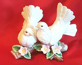White dove love birds