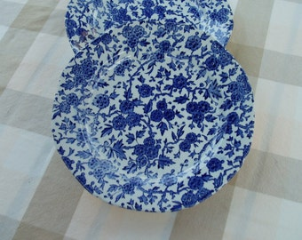 Blue Arden Dinner Plates
