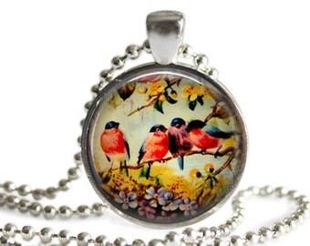 Bird Pendant, Bullfinch Pendant, Vintage Bird Necklace, Vintage Bird Picture Jewelry, Bird Jewellery, Glass Art Pendant, Bird Keychain