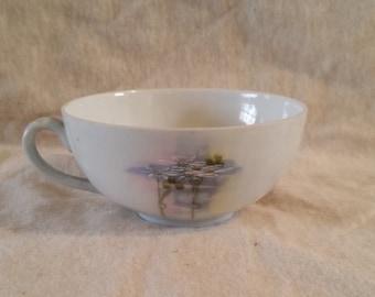 O&EG Royal Austria tea cup/royal austria/vintage cup/collectible cup/royal austria cup
