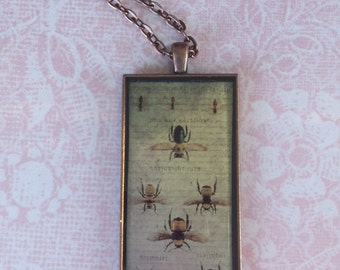 Steampunk Insect Entomology Resin Pendant