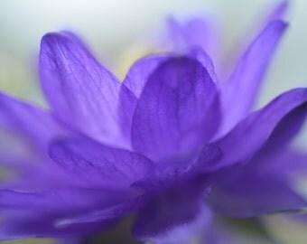 Pretty In Soft Purple #14